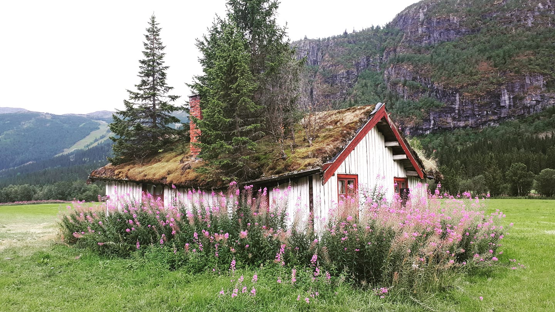 Venir en Norvège en voiture - Une blonde en Norvège