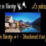 Déroulement d'une journée en Norvège (Podcast audio) - Une blonde en Norvège