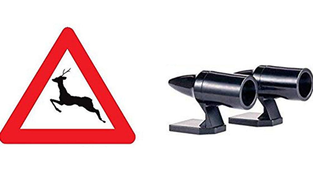 Comment réduire les risques d'accidents avec les animaux sur la route