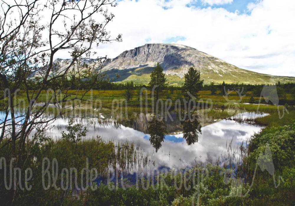Reflet à Valdres
