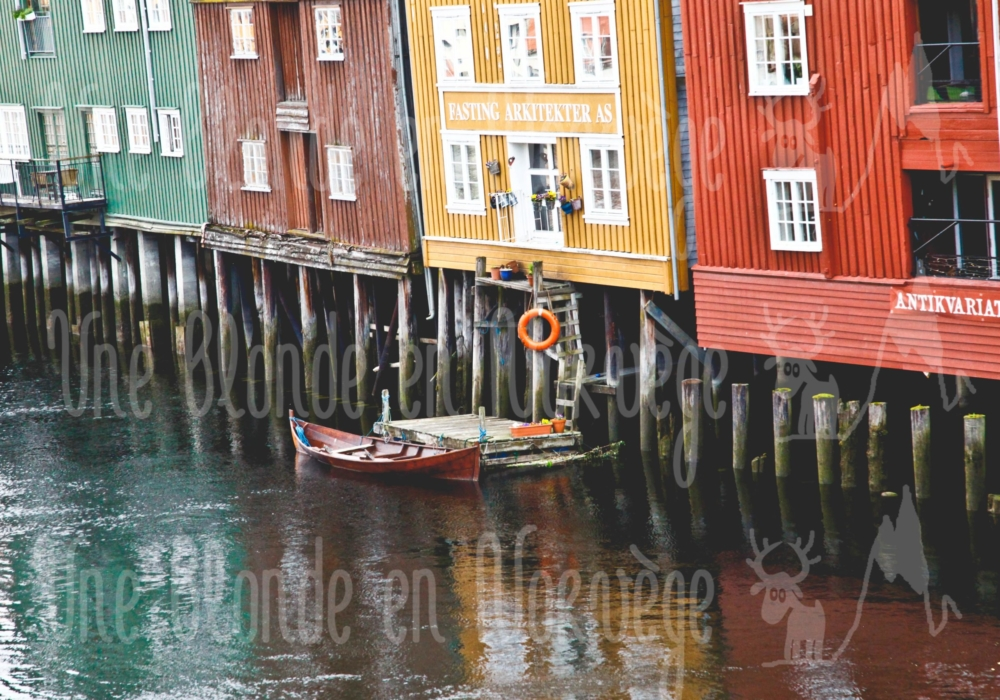 Trondheim multicolor