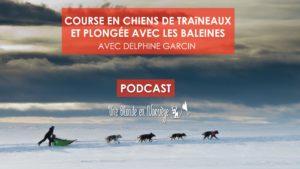 Course en chiens de traîneaux et plongée avec les baleines avec Delphine Garcin (podcast)