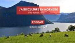 L'agriculture en Norvège - Une blonde en Norvège
