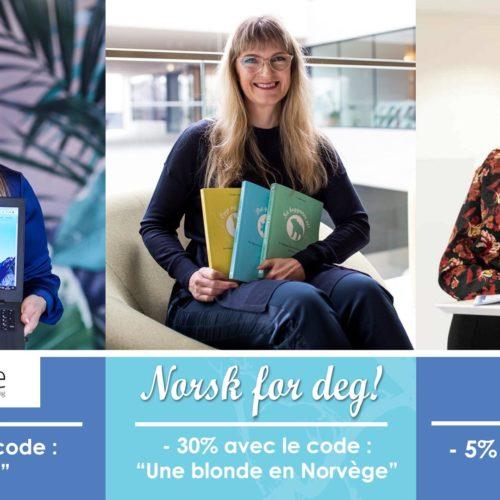 Comparatif de 3 écoles de norvégien - Une blonde en Norvège